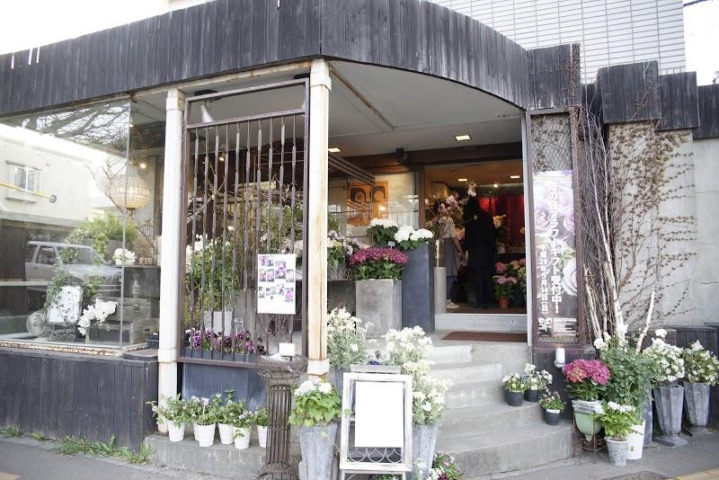 AROUND THE CORNER アラウンド・ザ・コーナー 札幌円山の花屋 円山公園の角にある、観葉植物のお店
