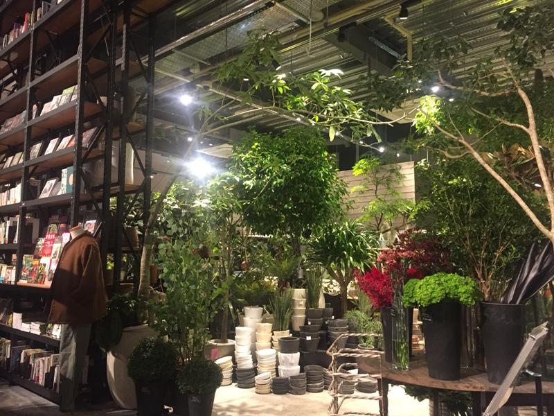 Flower Space Gravel フラワースペースグラベル 札幌旭ヶ丘の花屋 多くの観葉植物、庭のお花も多数在庫をもち花カフェもあるお店