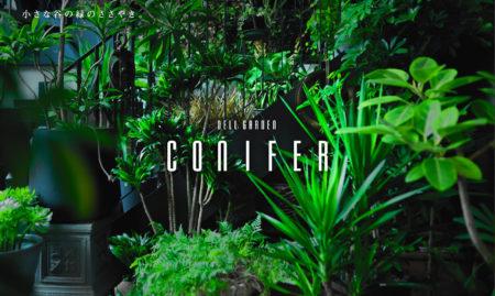 Dell Garden Conifer デルガーデン・コニファー 札幌中央区の花屋 円山裏参道にある観葉植物、切り花、造園設計まで行えるお店